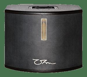 Ohm CW-28 wide dispersion loudspeaker